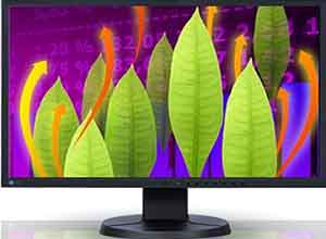 Eizo RadiForce Color LCD Monitor SCD 19102