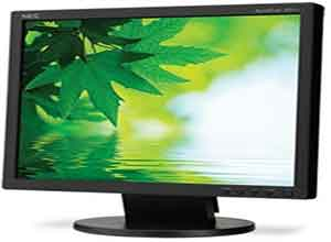 NEC 17 Inch Value Eco-Friendly Desktop Monitor AS171-BK