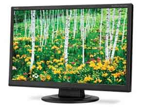 NEC 22 Inch Value Widescreen Desktop Monitor AS221WM-BK with Built-In Speakers