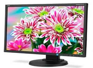 NEC 22 Inch LED Backlit Widescreen Desktop Monitor E223W-BK